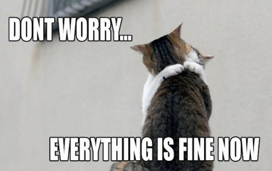 don-t-worry-cat-cats-kitten-kitty-pic-picture-funny-lolcat-cute-fun-lovely-photo-images